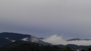 Views on Cameron highlands